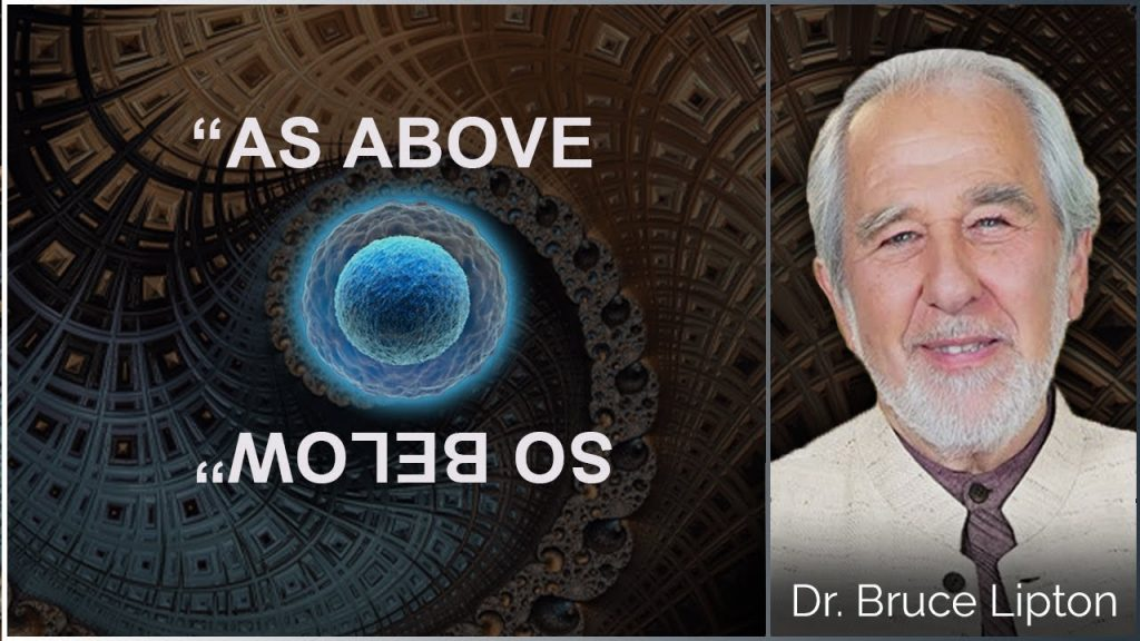 Dr. Bruce Lipton… Human Cells & The Mathematics of the Physical Realms